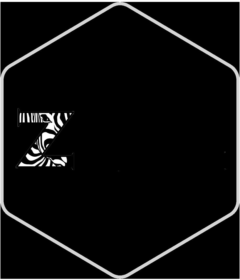 The Zebra Network Logo