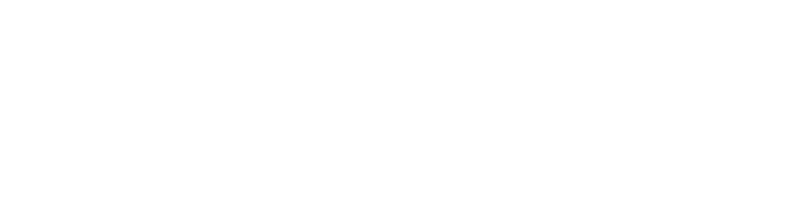 RareGuru Monochrome White Logo